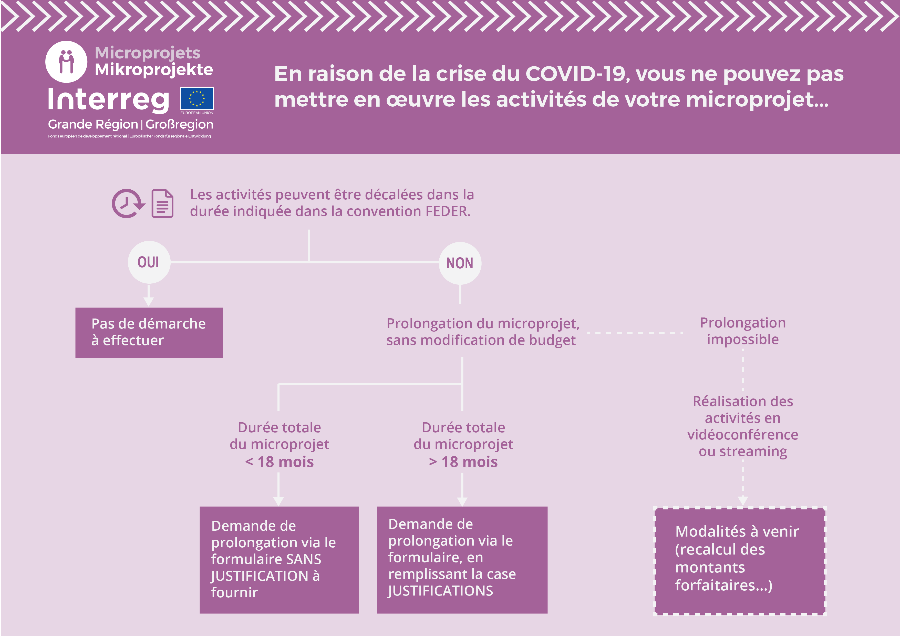FR Infographie Prolongation Microprojets